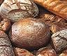 ORGANIC Wheat Sourdough Starter Kit