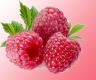Red Raspberry Extract Powder